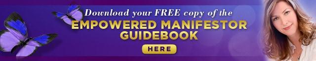 Manifestor-Guidebook_640x125_R1